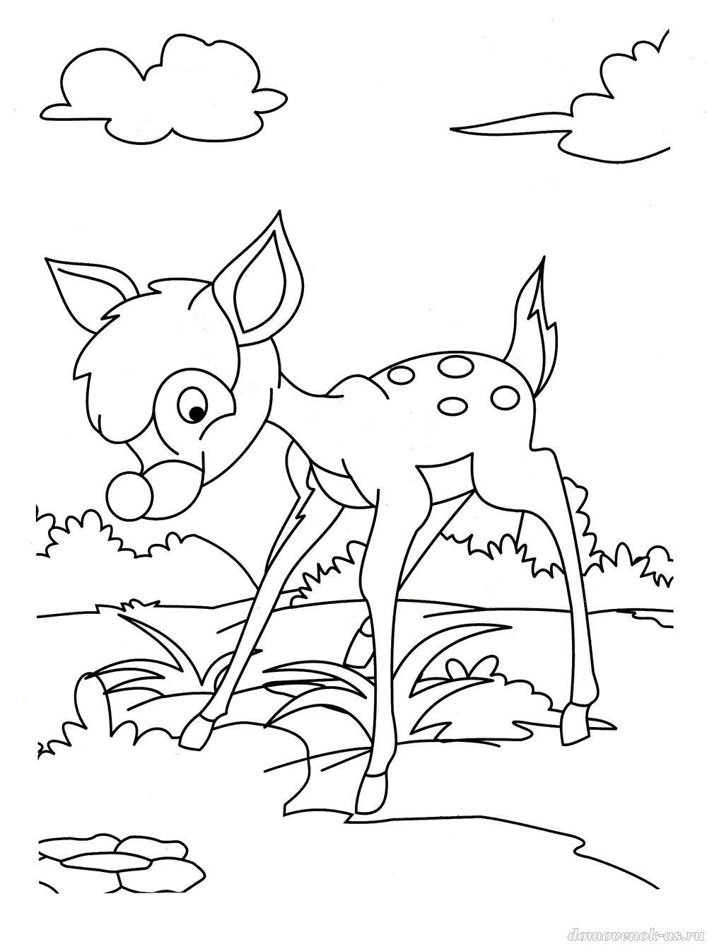 Раскраска для детей 5-7 лет