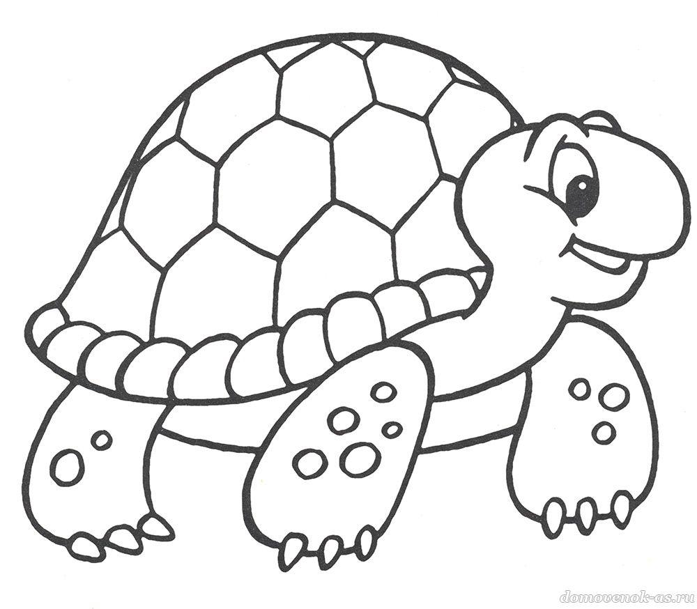Детская раскраска для малышей. Черепаха