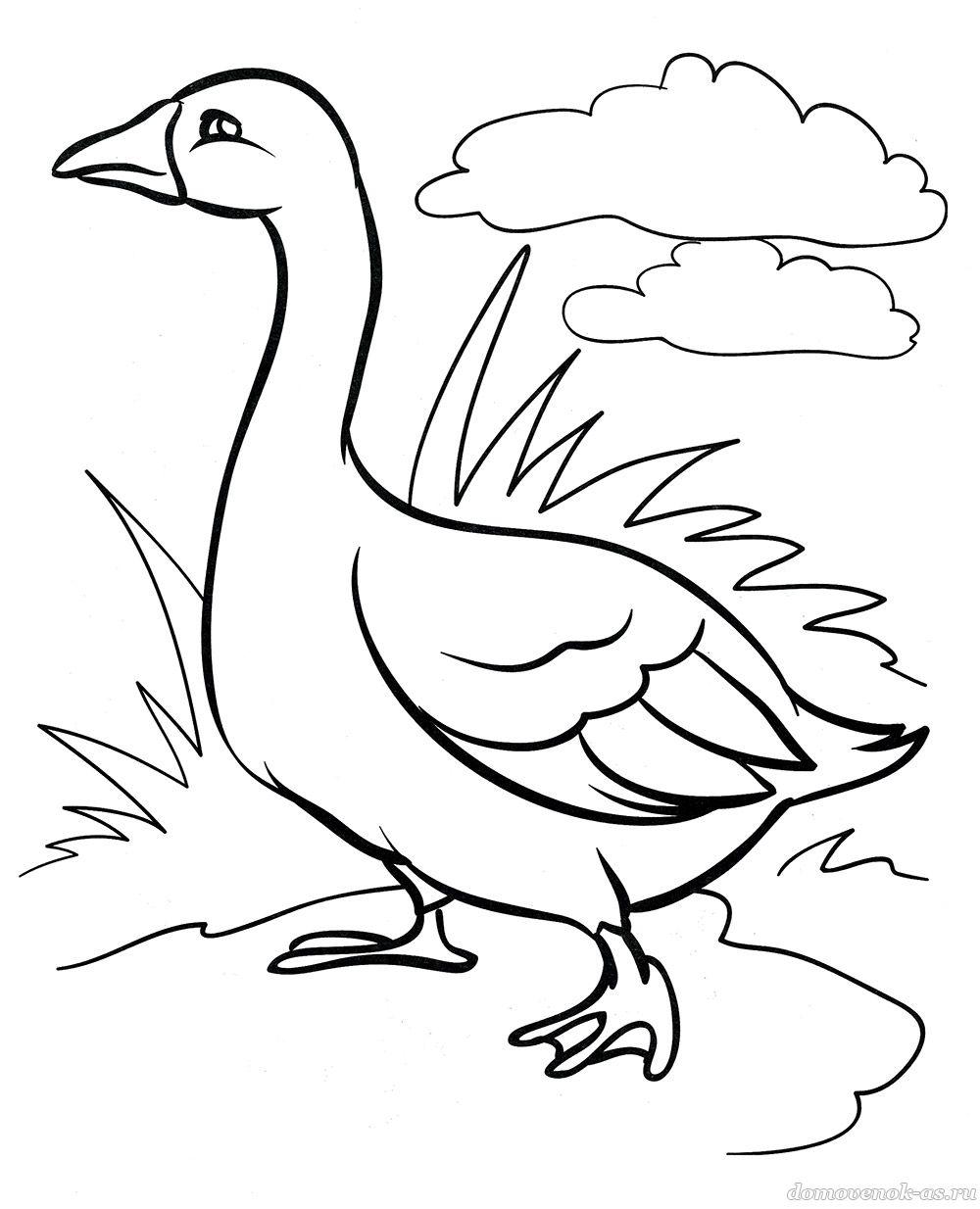 Раскраски «Животные в деревне» для детей 5-6-7 лет ...