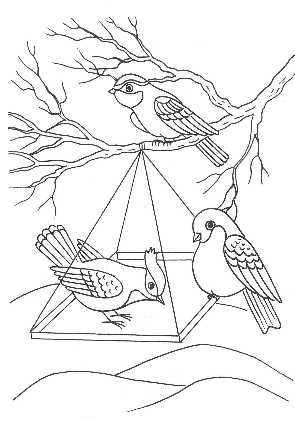 рисунок птицы на кормушке зимой карандашом возможна, как элемент