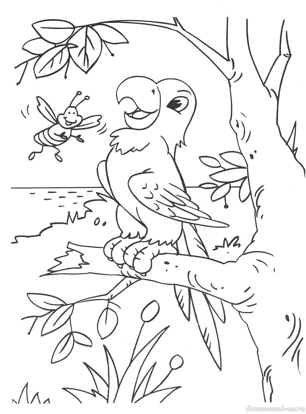 Раскраска для детей 6-8 лет. Попугай