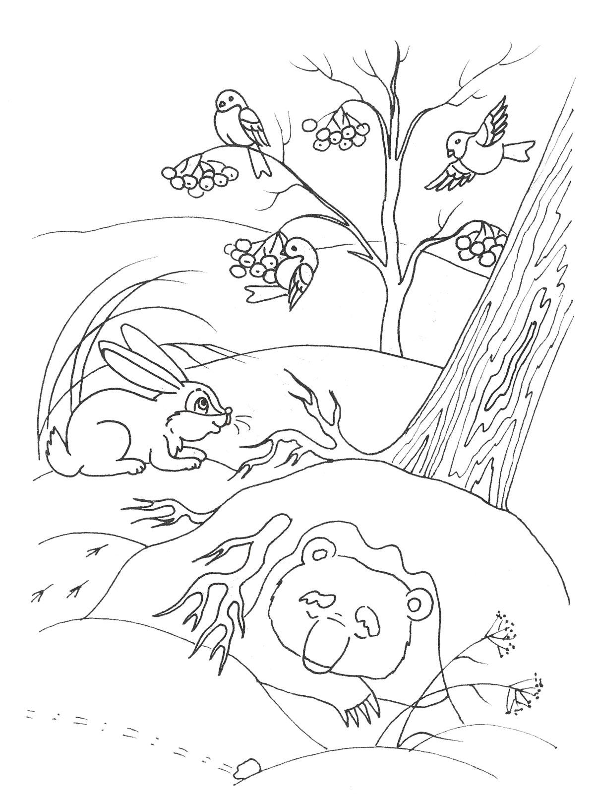 Картинки с зимней природой для детей