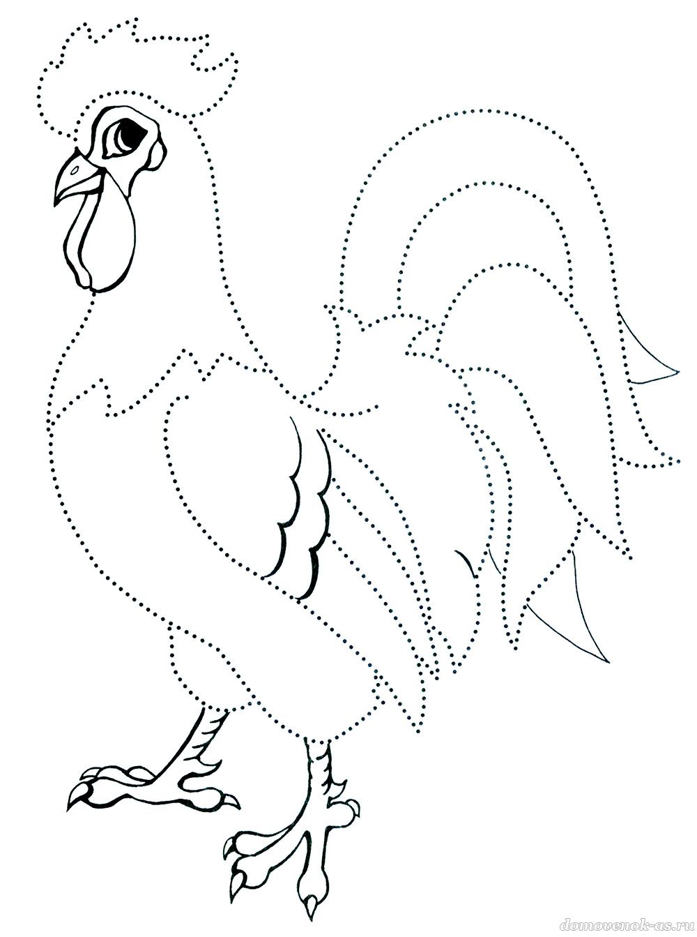 картинка раскраска петух для детей