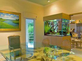 Дизайн аквариумов. Аквариумы в интерьере