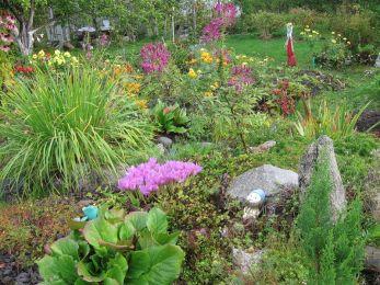 Работы на огороде и в саду в сентябре