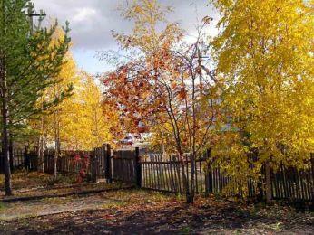 http://domovenok-as.ru/images/photos/medium/article916.jpg