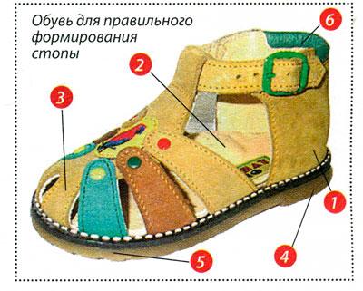 Выбирайте правильную обувь для ребенка thumbnail